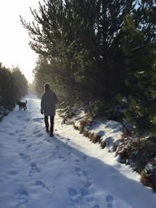 Vinter1 2016